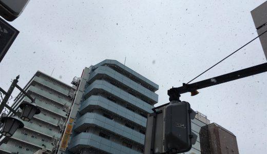 雪が降ったから撮ってみたが