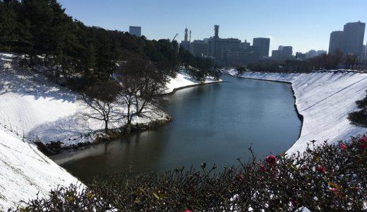雪降るといつもの世界が違って見えてやっぱり良し!