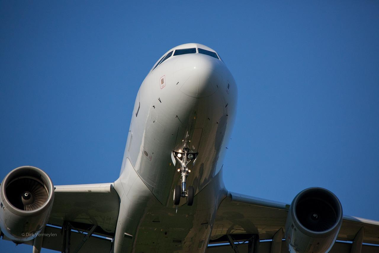 飛ばない飛行機。いけない奄美。